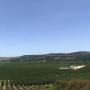 Campo Ranguili y sus nuevos proyectos